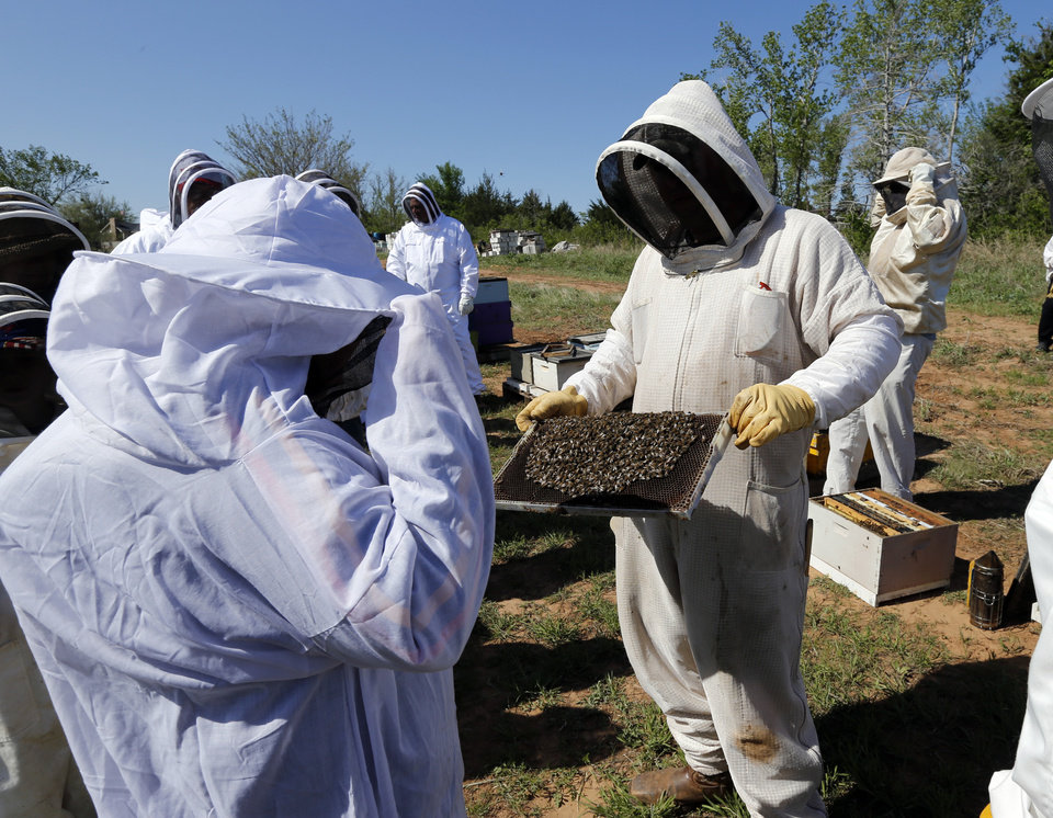 Brian Royal demonstrates bee keeping techniques to the Noble Bee Keepers Club at his home based business on Saturday, May 4, 2013, in Norman Okla.  