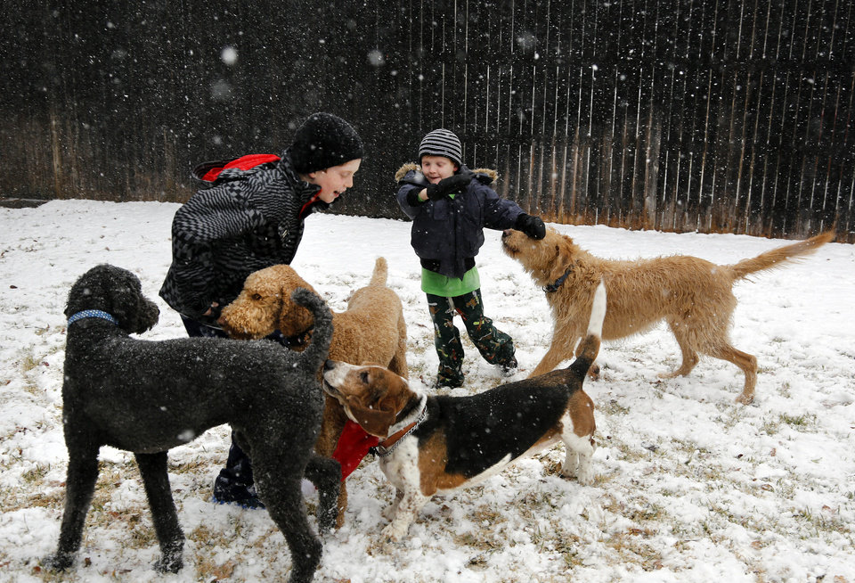Photo - Walker Bowerman, 10, left, and Hughes Bowerman, 6, plays with family dogs in the snow in Arlington, Texas on Tuesday, Dec. 25, 2012. (AP Photo/The Dallas Morning News, David Woo)