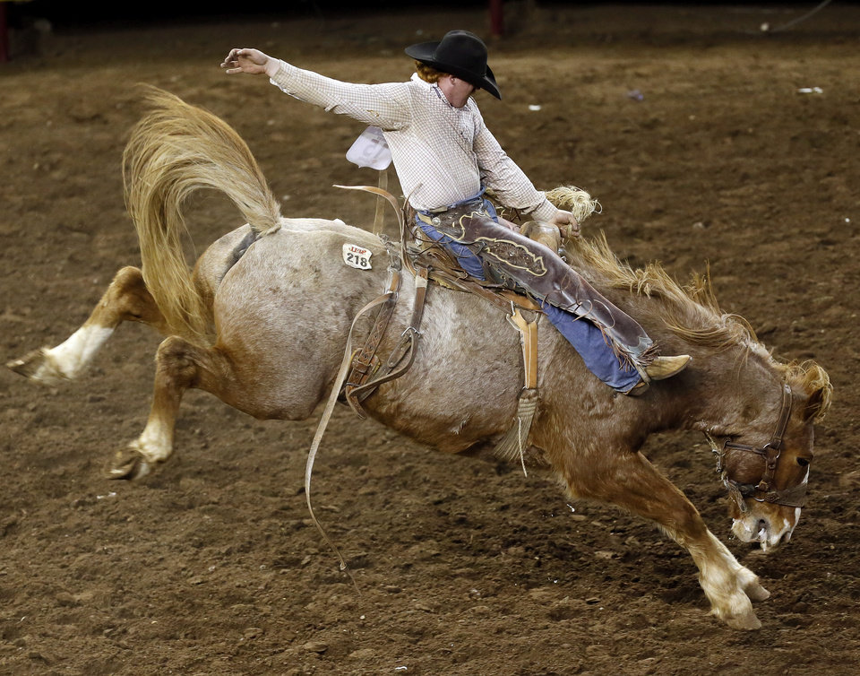 Photo - Tyler West of Lincoln, Ark., competes in saddle bronc during the International Finals Rodeo (IFR 44) at the Jim Norick Arena at State Fair Park in Oklahoma City, Sunday, Jan. 19, 2014. Photo by Nate Billings, The Oklahoman