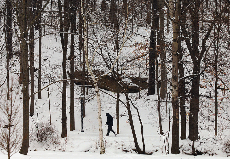 A walker treks along a snow-covered trail at The South Abington Township Park and Recreation Center in Chinchilla, Pa., Saturday, Dec. 29, 2012. Photo by Butch Comegys, The Scranton Times-Tribune/AP Butch Comegys