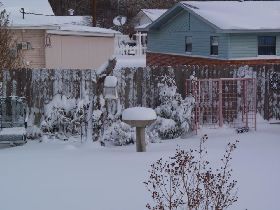 Photo - Snow on birdbath.