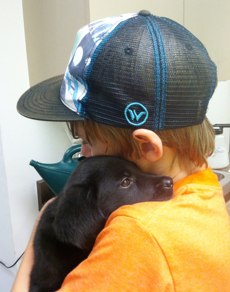 "Photo - This Nov. 2013 photo provided by Dianne Larson shows her son, Tanner, with 8 weeks old Ruby at the Best Friends Animal Society in the Mission hills section of Los Angeles. Tanner was working with puppies and met Ruby, a black Lab. ""It was love at first sight,"" Larson said. Ruby is 1 year old now and school has been in session for two weeks. Ruby's still searching for him when he's gone. (AP Photo/Dianne Larson)"