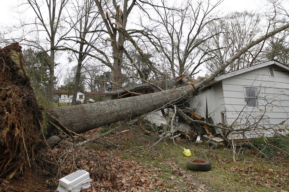 Photo - An uprooted tree sits in the home of Dorothy Dixon in Centreville, Miss. on Wednesday, Dec. 26, 2012. No one was home at the time the tree fell on Dixon's home, except for Dixon's dogs who were unharmed.  More than 25 people were injured and at least 70 homes were damaged in Mississippi by the severe storms that pushed across the South on Christmas Day, authorities said Wednesday. (AP Photo/The Enterprise-Journal, Philip Hall)