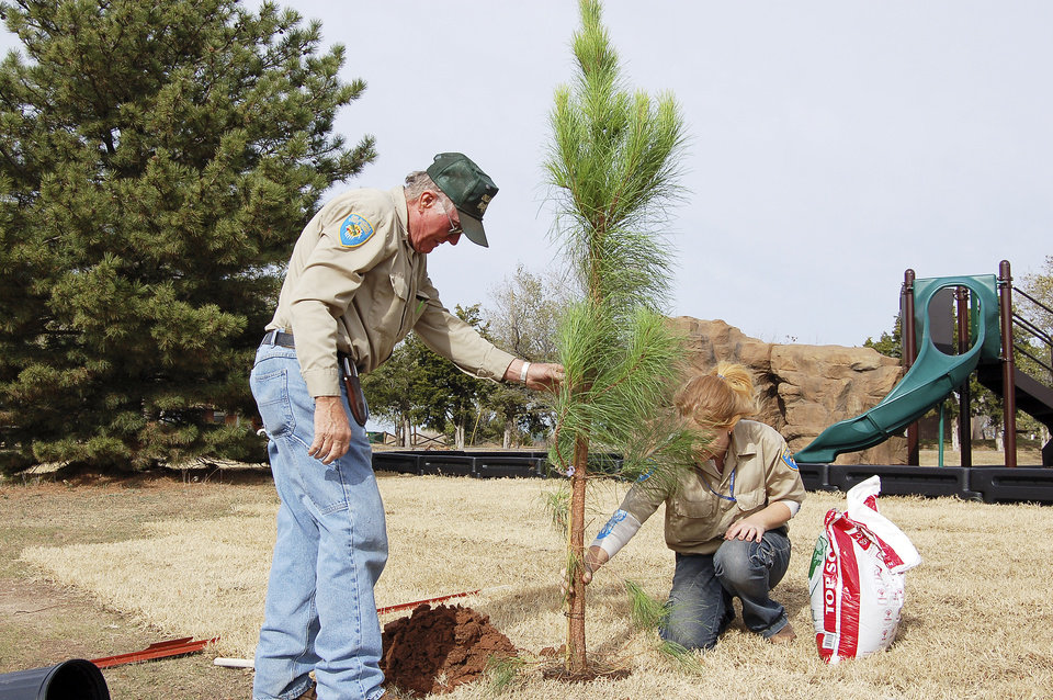 Photo - Workers plant a tree at Alabaster Caverns State Park near Freedom.  STATE TOURISM PHOTO