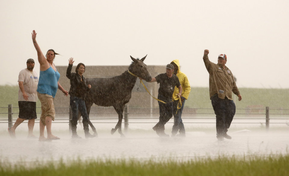 Photo - People stop traffic to help one of several loose horses across I-40 just east of 81 in El Reno, Okla., after a tornado moved through the area on Friday, May 31, 2013. Photo by Jim Beckel, The Oklahoman