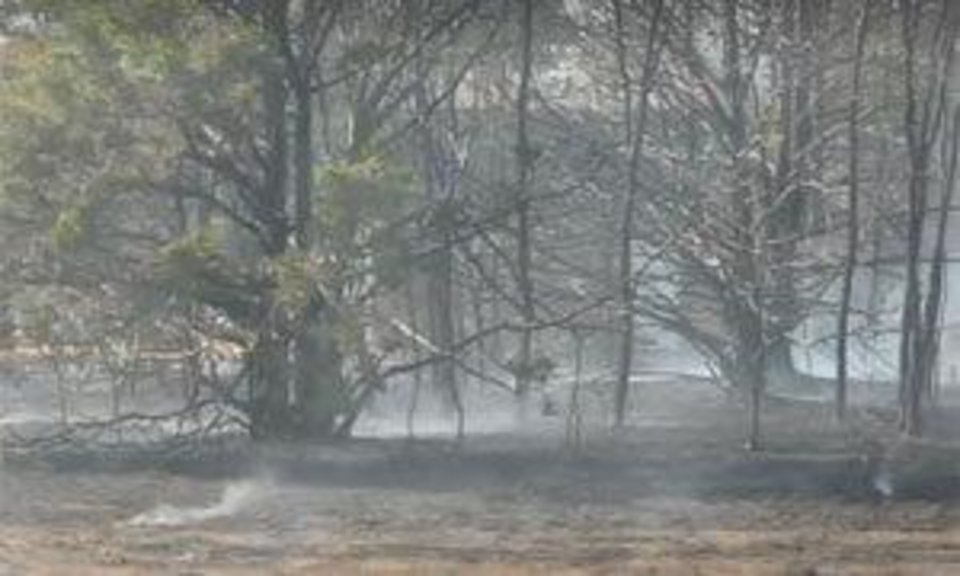 Photo - Smoke from a wildfire along Mustang road near SW 104 Monday afternoon.  MATT DINGER
