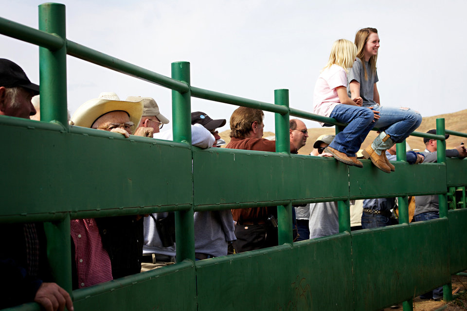 Photo -   Hannah Kremer, 14, far right, talks with her sister Grace Kremer, 9, both of Custer, as crowds catch a glimpse of the approximately 1,000 buffalo that were corralled during the 47th annual Buffalo Roundup in western South Dakota's Custer State Park, Monday, Sept. 24, 2012. Organizers said the event drew more than 14,000 spectators from across the world. (AP Photo/Amber Hunt)