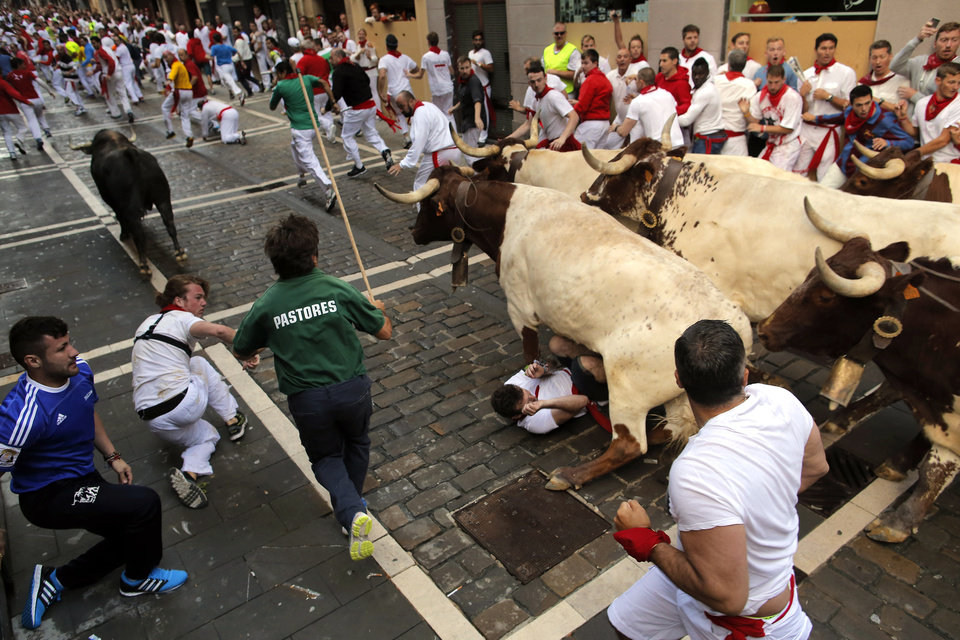 Photo - Dolores Aguirre fighting bull runs as steers pass over a reveler during the running of the bulls of the San Fermin festival, in Pamplona, Spain, Tuesday, July 8, 2014. Revelers from around the world arrive to Pamplona every year to take part on some of the eight days of the running of the bulls glorified by Ernest Hemingway's 1926 novel