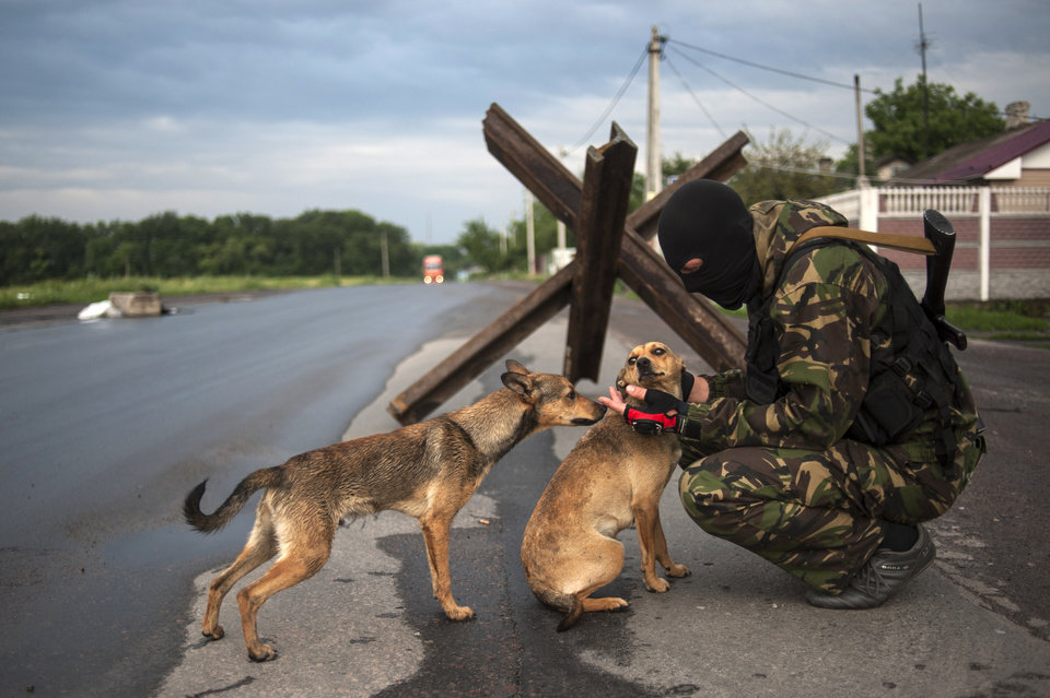 Photo - A pro-Russian fighter pets dogs at a check point in the village of Karlivka near Donetsk, eastern Ukraine, Wednesday, June 18, 2014, before a handover of the bodies of Ukrainian troops killed in a plane shot down near Luhansk. The two sides managed to arrange a brief truce Wednesday evening in the eastern town of Karlivka to allow pro-Russian forces to hand over the bodies of 49 Ukrainian troops who died when the separatists shot down a transport plane bound for the airport in Luhansk last weekend.  (AP Photo/Evgeniy Maloletka)