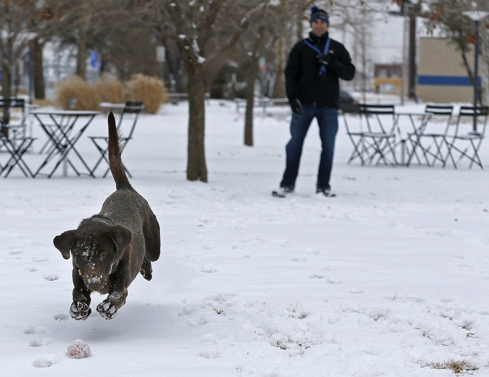 Photo - Scott Stone plays fetch with his dog at the Myriad Botanical eGardens following a winter storm that moved through the area Saturday morning in Oklahoma City, Sunday, Feb. 02, 2014.  Stone adopted the dog yesterday from a lab rescue. Photo by Sarah Phipps, The Oklahoman