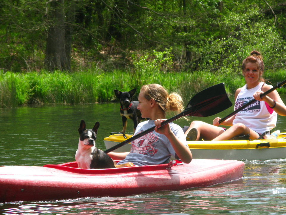 Photo - A pair of dogs joins their handlers on a lazy kayak ride down the Lower Mountain Fork River in Beavers Bend State Park. PHOTO BY LILLIE-BETH BRINKMAN, THE OKLAHOMAN