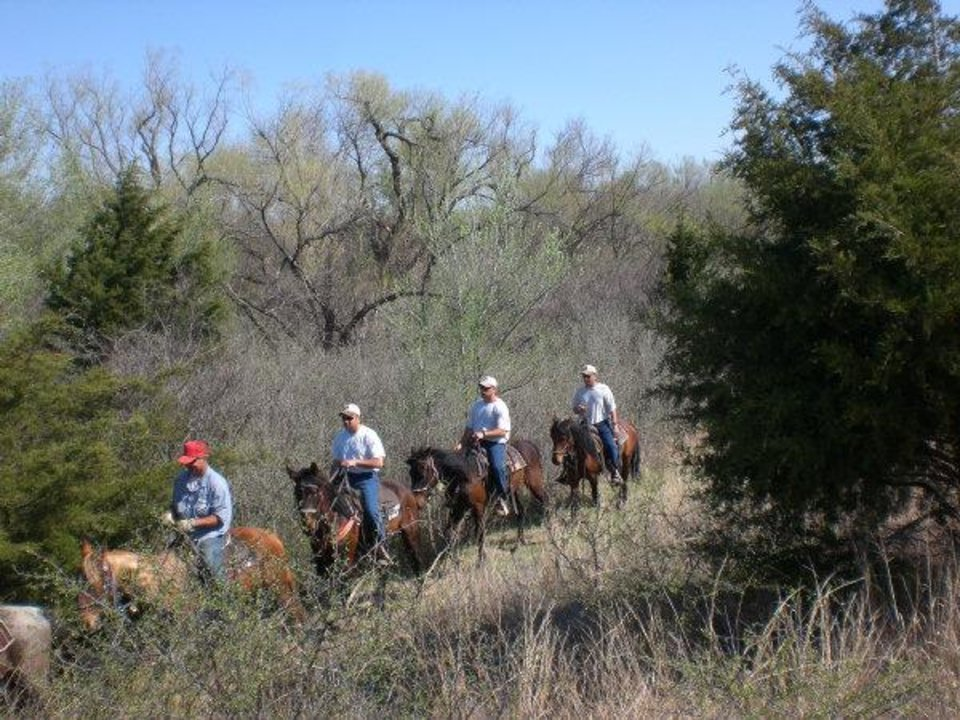 Photo - Hutchinson Correctional Facility inmates train mustangs that were captured on public lands. Trained mustangs may be adopted by the public or the U.S. Border Patrol.  PHOTO PROVIDED BY HUTCHINSON CORRECTIONAL FACILITY