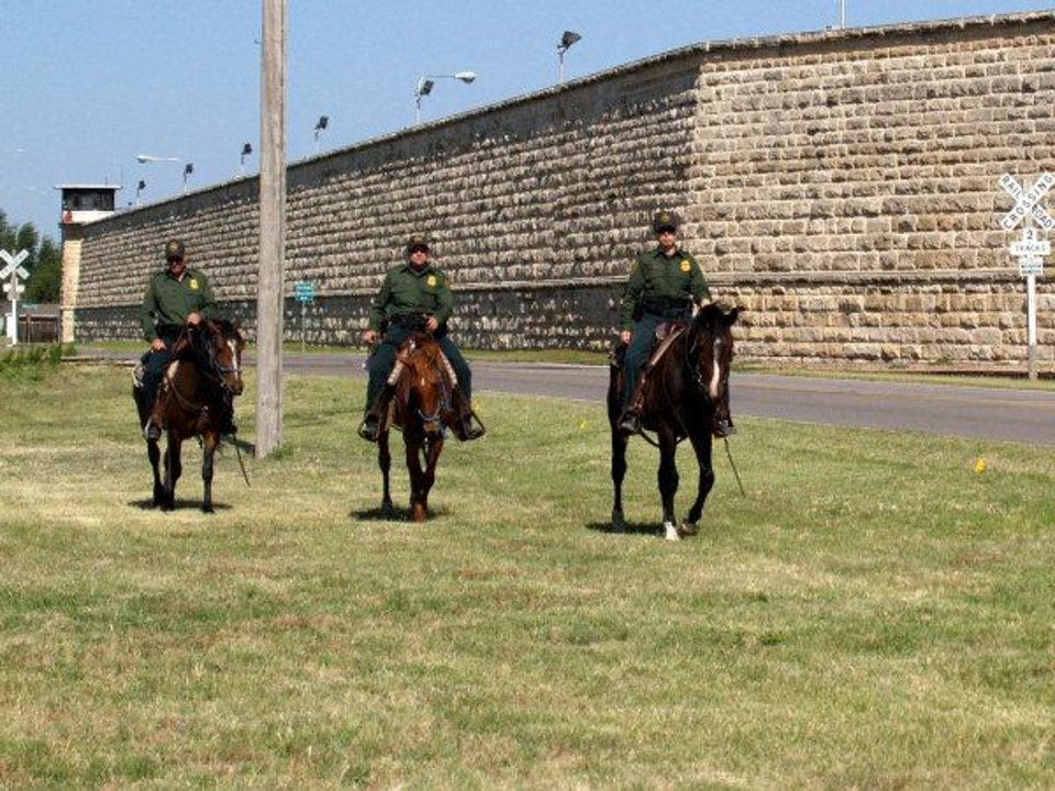 Photo - Supervisory Border Patrol Agent Mary Olivares, followed by two agents, take their newly adopted mustangs for a ride outside the Hutchinson Correctional Facility in Kansas before transporting them for duty along the U.S.-Mexican border.  PHOTO PROVIDED BY HUTCHINSON CORRECTIONAL FACILITY