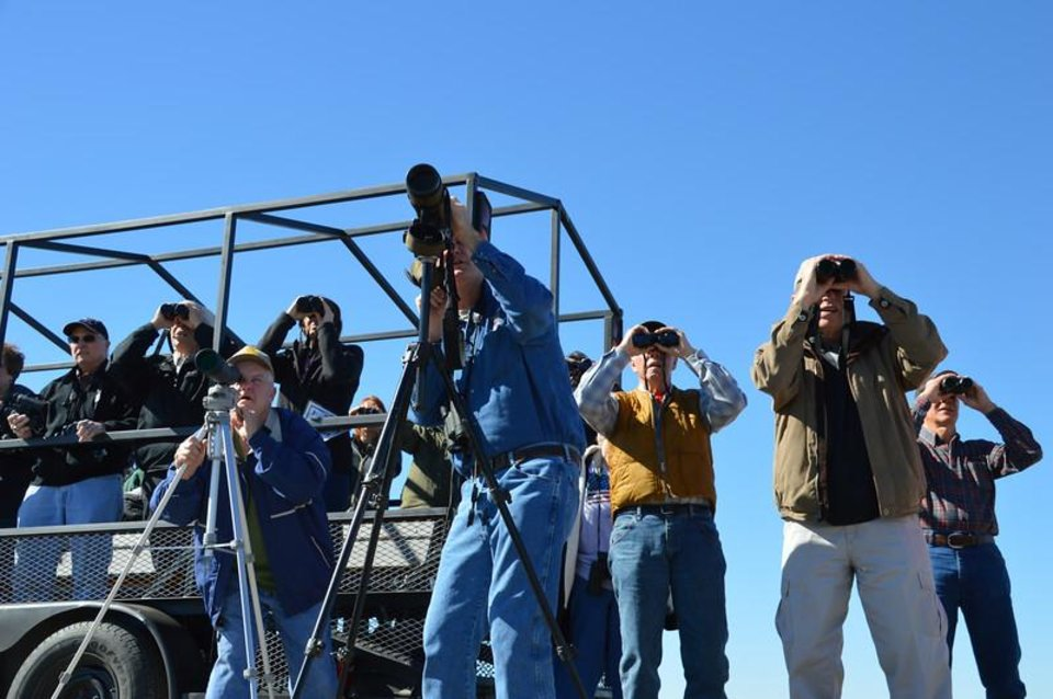 Photo -  Bird watchers search the Hackberry Flat Wildlife Management Area in southwestern Oklahoma. To date, 264 bird species have been documented on the wetland. [PHOTO PROVIDED]