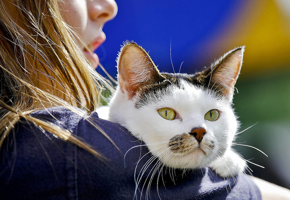 Reka Nagykaldi holds her cat, Rosie, during the blessing of the animals at St. Elizabeth Ann Seton Catholic School on Friday.   Photo by Chris Landsberger, The Oklahoman <strong>CHRIS LANDSBERGER - CHRIS LANDSBERGER</strong>