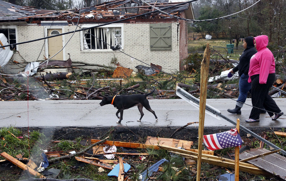 Photo - Residents of Petal, Miss., walk their dog through a tornado damaged neighborhood Tuesday, Feb. 12, 2013 following the Sunday afternoon tornado that caused damage throughout the community. (AP Photo/Rogelio V. Solis)