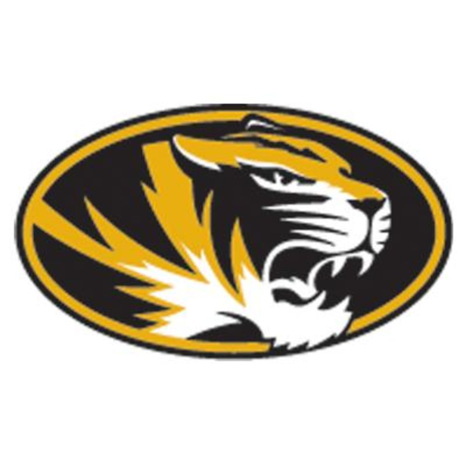 Photo - UNIVERSITY OF MISSOURI / MU / MIZZOU / LOGO / BUTTON / BUG / GRAPHIC