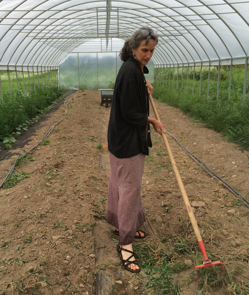 Photo - In this Wednesday, July 23, 2014 photo, Joanna Green, director of the Groundswell Center for Local Food and Farming, hoes weeds in the new greenhouse at the center's incubator farm in Ithaca, N.Y. The incubator farm is one of dozens springing up around the country to help would-be farmers learn the trade and develop a market before they invest in their own land and equipment. (AP Photo/Mary Esch)