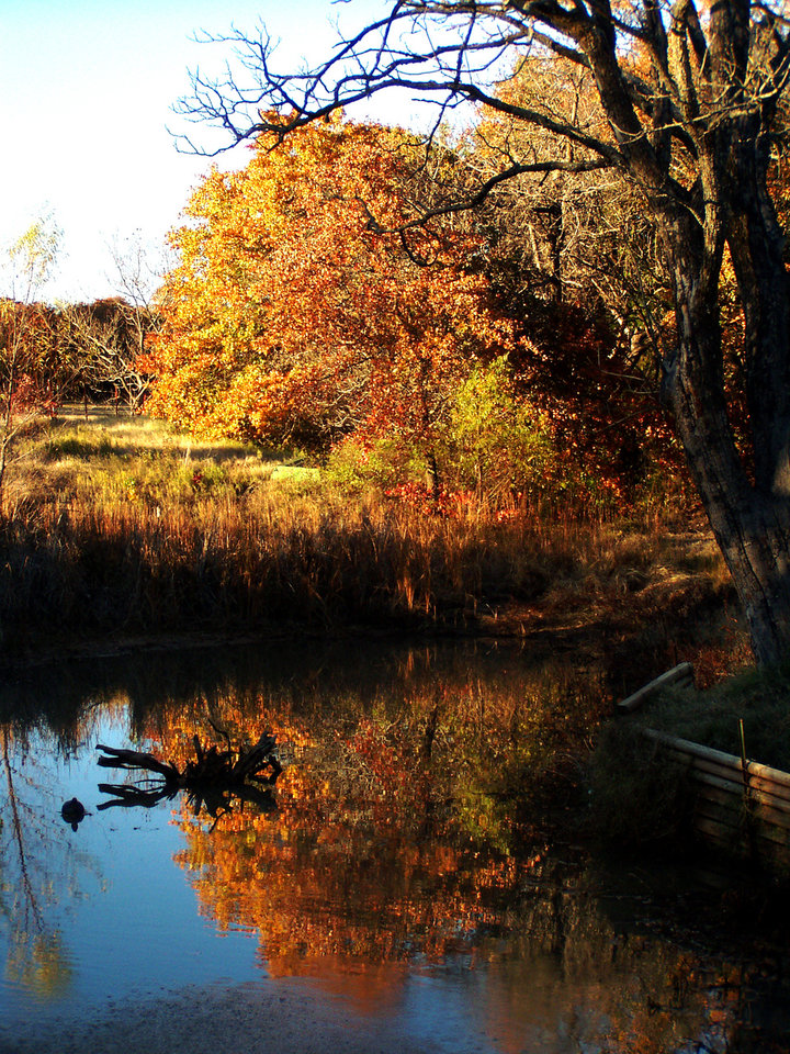 Reflection of Fall<br/><b>Community Photo By:</b> Ron Skeeters<br/><b>Submitted By:</b> Ron,