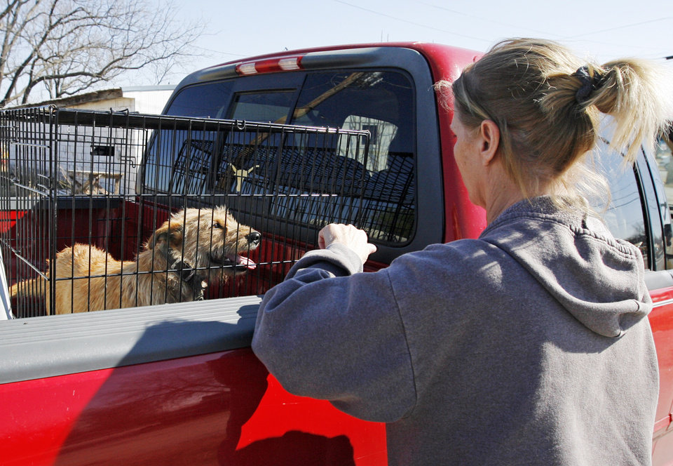 Photo - Cathey McCutchen looks at a dog rescued from a damaged mobile home park in Lone Grove, Okla., Wednesday, February 11, 2009. On Tuesday, February 10, 2009, a tornado moved through Lone Grove killing at least eight people. McCutchen recognized the dog and another in the truck as belonging to her neighbor. She was hoping to find her missing cat. The dogs were rescued by Forever Friends Foster Care, assisting Ardmore Animal Control. BY NATE BILLINGS, THE OKLAHOMAN