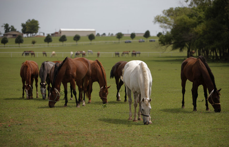 Photo - Federal agents converge at Zule Farms in Lexington, Tuesday, June 12, 2012.  The multi-state raid targeted the brother of a high-ranking official in a Mexican drug cartel for allegedly using a horse-breeding operation to launder money.   Photo by Garett Fisbeck, The Oklahoman