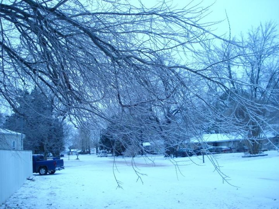 ice storm 07<br/><b>Community Photo By:</b> vanessa donovan<br/><b>Submitted By:</b> vanessa, lexington