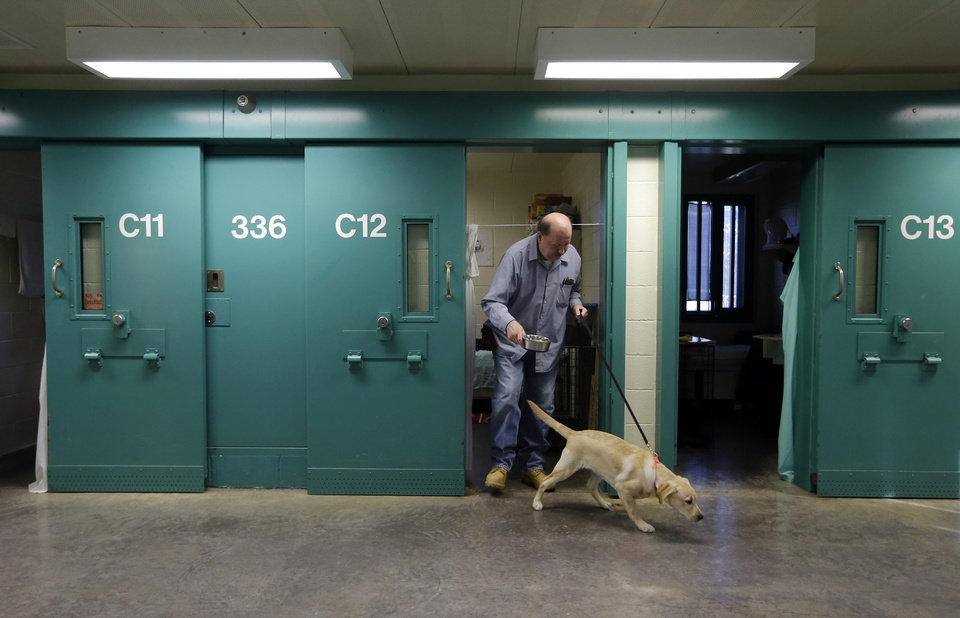 In this Nov. 26, 2012 photo, inmate John Barba walks out of his cell with Dill, a veteran assistance dog in training, at Western Correctional Institution in Cresaptown, Md. Dill is one of three dogs assigned since September to inmates at the maximum-security prison for basic training as service dogs for disabled military veterans. The inmates, who are also veterans, are among the state\'s first prisoners to join a national trend of training service dogs in correctional institutions. Professional trainers say prison-raised dogs tend to graduate sooner and at higher rates than those raised traditionally in foster homes because puppies respond well to the consistency and rigid schedules of prison life. (AP Photo/Patrick Semansky)