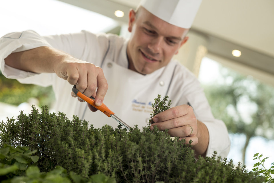 Photo - This undated image provided by Crystal Cruises shows a chef on the Crystal Serenity cruise ship snipping fresh herbs from the ship's onboard herb garden. The herb garden is part of Crystal Cruises' emphasis on fresh ingredients and flavors,  part of a broader trend in the cruise industry to expand culinary offerings with specialty restaurants, menus from celebrity chefs and a greater variety of cuisines. (AP Photo/Crystal Cruises)