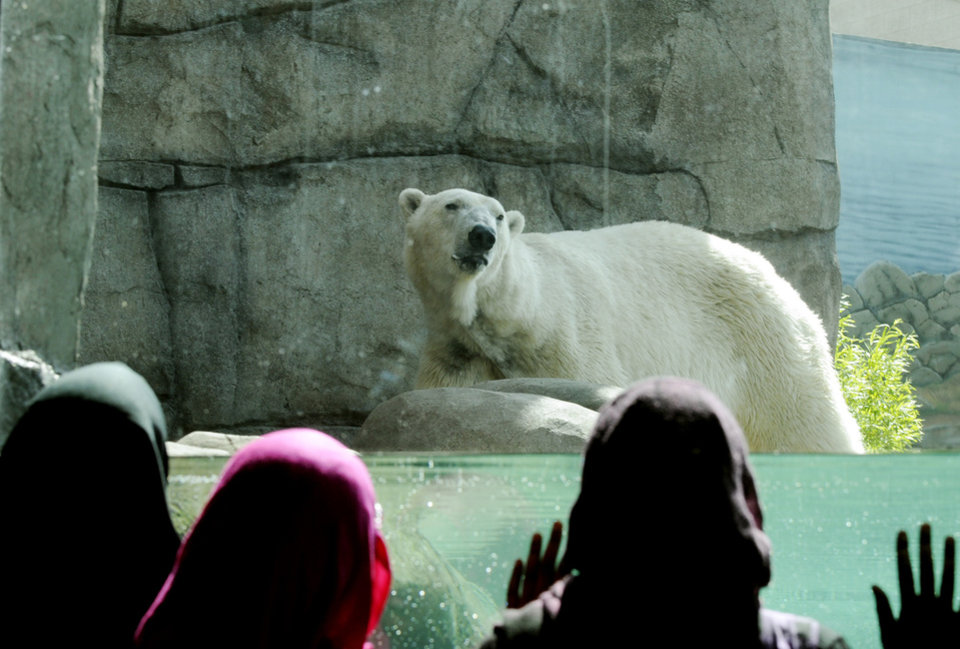 Photo - In this June 3, 2009 file photo, three young girls watch one of the polar bears at the Polar Bear Odyssey exhibit at Como Zoo in St. Paul, Minn. St. Paul's Como Park Zoo is small enough to be kid-friendly, but big enough to hold lions and tigers and polar bears. Zoo keepers give daily free talks. (AP Photo/Jim Mone,File)