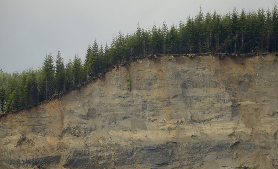 Photo - Standing trees line the top edge of a massive mudslide Thursday, March 27, 2014, that struck Saturday near Darrington, Wash. (AP Photo/Ted S. Warren, Pool)
