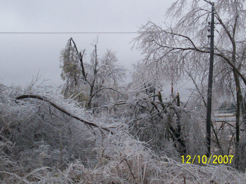 Downed trees next to our house<br/><b>Community Photo By:</b> Elizabeth<br/><b>Submitted By:</b> Elizabeth, Oklahoma City