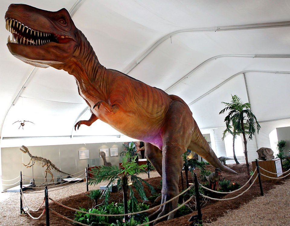 Photo - A Tyrannosaurus rex  is one of the dinosaurs on display at a new exhibit at the Oklahoma City Zoo in Oklahoma City on Wednesday, March 11, 2008. By John Clanton, The Oklahoman ORG XMIT: KOD