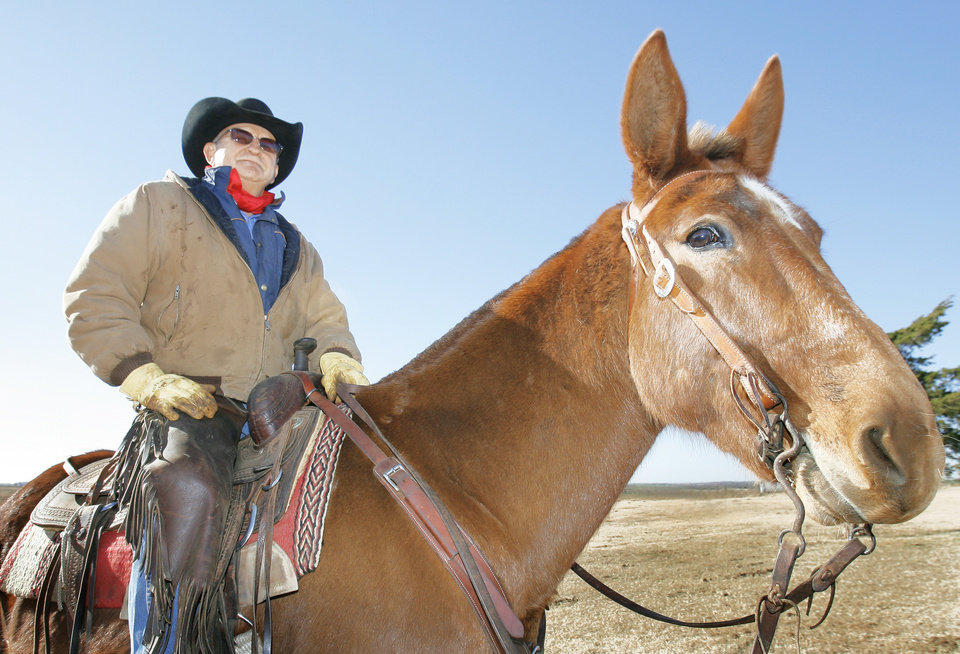 Shown on his ranch in Crescent, Mule-Packer Bruce Carlson and his mule Moon were a step away from death in the Colorado mountains. Photo By David McDaniel, The Oklahoman
