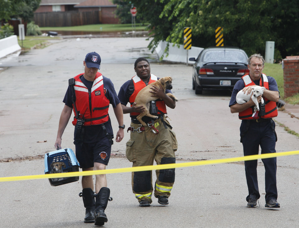 Photo - FLASH FLOODS / TORRENTIAL RAIN / FLOOD / FLOODING / DOG RESCUE / THE VALLEY HOUSING ADDITION: Three Oklahoma City firefighters carry dogs rescued from the flooding in The Valley in Edmond, Monday,  June 14, 2010.   Photo by David McDaniel, The Oklahoman   ORG XMIT: KOD
