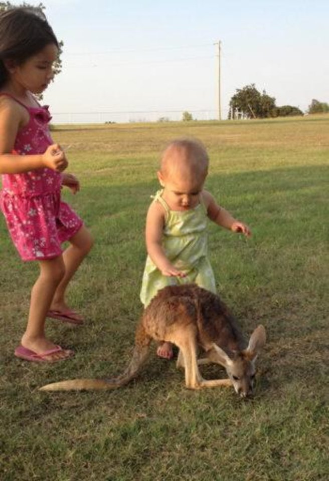 Pet kangaroo Lucy Sparkles, center, is seen with Layla Menhusen, left, and Indya Menhusen, right. The Menhusen family believes their missing pet hopped off Thursday after being spooked by the family's Thanksgiving visitors. PHOTO PROVIDED
