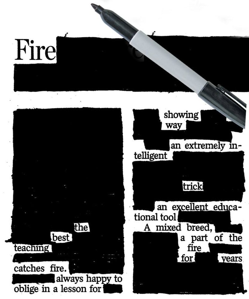 Photo - GRAPHIC: Newspaper Blackout Poetry contest: Youth winner: Haydn Kirkpatrick