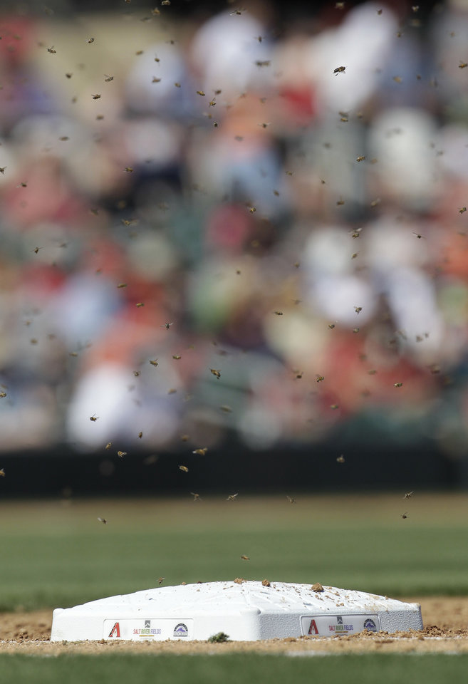 Photo -   Bees swam around first base during the second inning of a spring training baseball game between the Arizona Diamondbacks and San Francisco Giants, Sunday, March 4, 2012, in Scottsdale, Ariz. The game was delayed for 41 minutes. (AP Photo/Darron Cummings)
