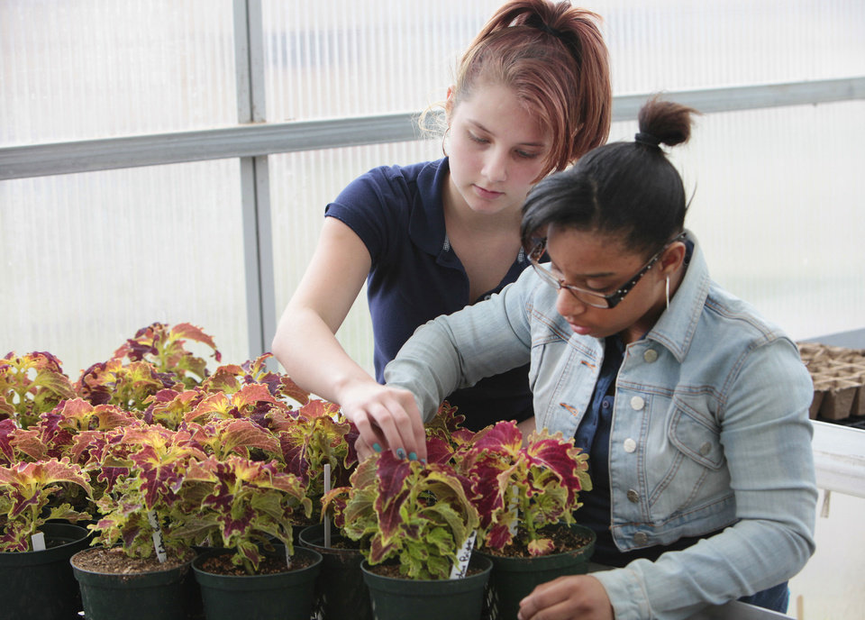 FFA student Kristina Hosea, left, waters plants with Jeanisha Bowen in the John Marshall High School greenhouse. Photos By David McDaniel, The Oklahoman