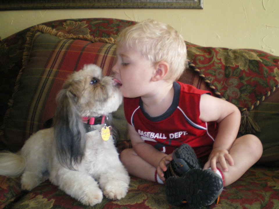 "...and they call it ""Puppy Love"".    Seth Lowery, 2 year old grandson of Marla Lowery giving Carly, a 2 1/2 year old Shihtzu, ""goodbye kisses"".<br/><b>Community Photo By:</b> Marla Lowery<br/><b>Submitted By:</b> Marla, Midwest City"