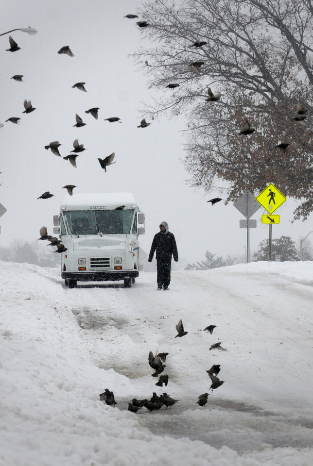 Photo - A pedestrian walks down a street as a flock of birds fly by after heavy snowfall moved through the region, Friday, Dec. 6, 2013, in Carbondale, Ill. A big chunk of the U.S. is getting a blast of frigid temperatures, sleet, snow and ice. (AP Photo/The Southern, Steve Matzker)