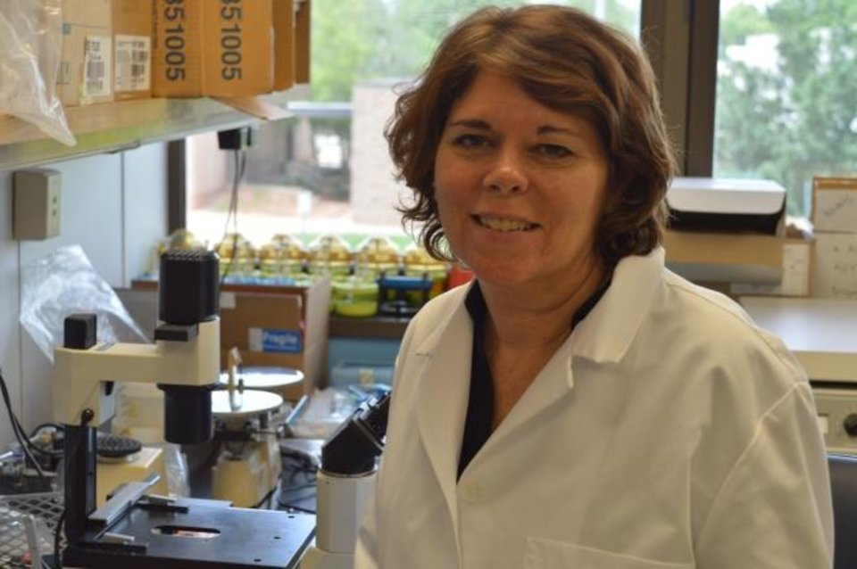 Photo -  Oklahoma Medical Research Foundation scientist Susan Kovats, Ph.D. [Provided]