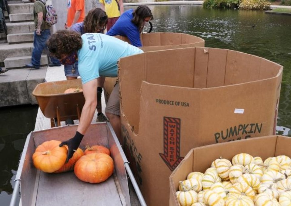 Photo -  Staffers haul gourds Oct. 9 as local artist Nick Bayer gets help building a giant pumpkin mural on the Water Stage for the Myriad Botanical Gardens' Great Pumpkin Patch. [Doug Hoke/The Oklahoman]