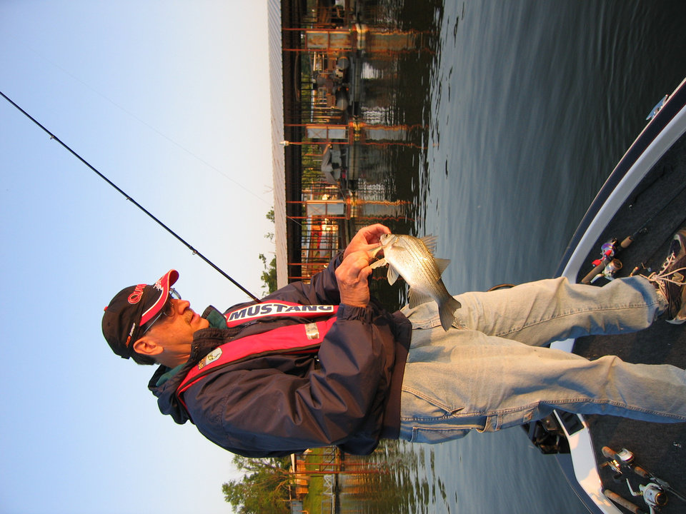 Lake eufaula a summer hot spot for insatiable sandies for Best time to go bass fishing