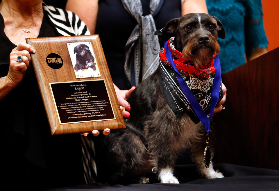 Photo - Sarge an assistance dog trained at the inmate run dog training program at LARC is inducted into the animal Hall of Fame for his work with veterans on Saturday, Jan. 31, 2015 in Norman, Okla.  Photo by Steve Sisney, The Oklahoman