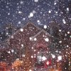 Snowy lights. Submitted by Kristi Self.