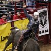 Allen Tim Pippin of Stockbridge, Ga., competes in bull riding during the International Finals Rodeo (IFR 44) at the Jim Norick Arena at State Fair Park in Oklahoma City, Sunday, Jan. 19, 2014. Photo by Nate Billings, The Oklahoman