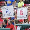 Photo - Two fans hold up signs for their respective teams in the first inning of a baseball game between the St. Louis Cardinals and the Kansas City Royals, Monday, June 2, 2014, in St. Louis.(AP Photo/Tom Gannam)