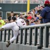 Photo - Virginia right fielder Joe McCarthy (31) leans over the barrier as he attempts to catch a foul ball hit by Mississippi's Preston Overbey in the third inning of an NCAA baseball College World Series game in Omaha, Neb., Sunday, June 15, 2014. (AP Photo/Ted Kirk)