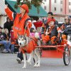 A child rides in a dog-pulled wagon during the Oklahoma State Cowboy\'s homecoming parade in downtown Stillwater, OK, Saturday, Oct. 29, 2011. By Paul Hellstern, The Oklahoman