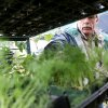 Bill Farris of Prairie Wind Nursery in Norman talks with a customer about his herbs during an annual herb fest at Susan Graf\'s Crestview Farms in Edmond on May 3, 2009. Photo by John Clanton